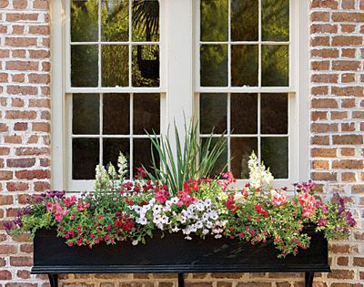 Love this sweet flower box