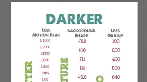 Photography Cheat Sheet FREE printable to capture light and dark photos! Helps