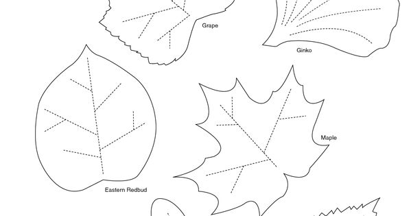 Grape Leaf Template Printable