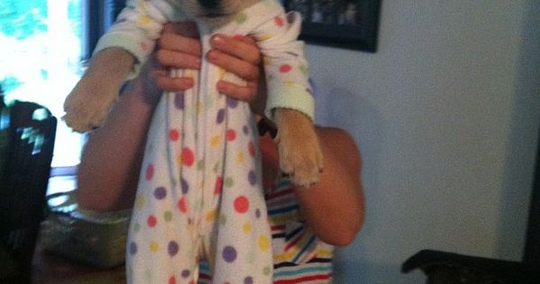 Can't handle it. A puppy in footy pajamas. OH THE CUTENESS I