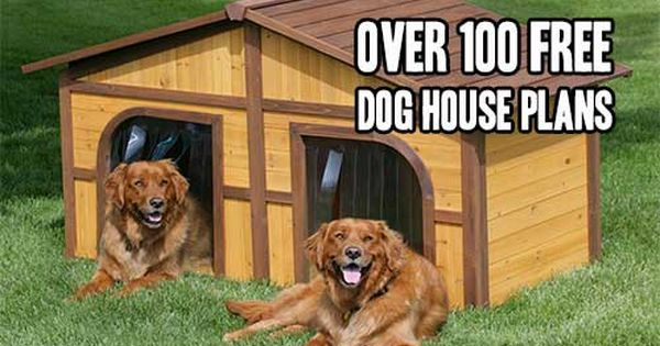 That S Not A Dog House This Is A Dog House Cool Dog Houses
