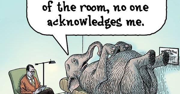 Elephant in the room (Cartoon by Dan Piraro)