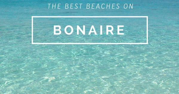 meet bonaire singles Bonaire's best 100% free online dating site meet loads of available single women in bonaire with mingle2's bonaire dating services find a girlfriend or lover in bonaire, or just have fun flirting online with bonaire single girls.