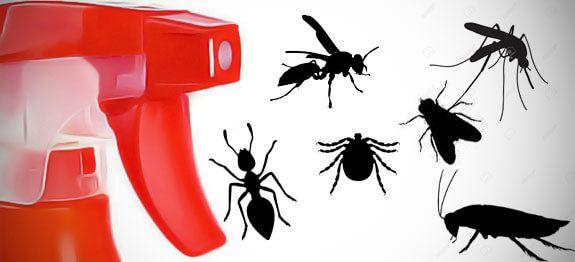 Recettes Naturelles De Repulsifs A Insectes En 2020 Repulsif