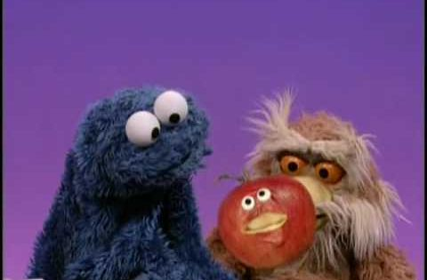 Sesame Street Quot A Cookie Is A Sometime Food Quot Cookie