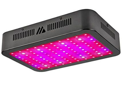 Top 4 Best Led Grow Lights For Lettuce Do You Know Led Grow Lights Best Led Grow Lights Led Grow Lights Plants