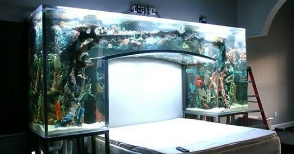 Fish tank headboard this was built by atm in vegas for Atm fish tank