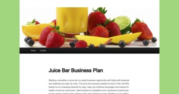 Business Plan of a Juice Parlor Essay