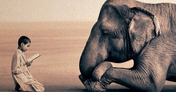 Boy reading to elephant _____ __ photo by gregory colbert ASHES and