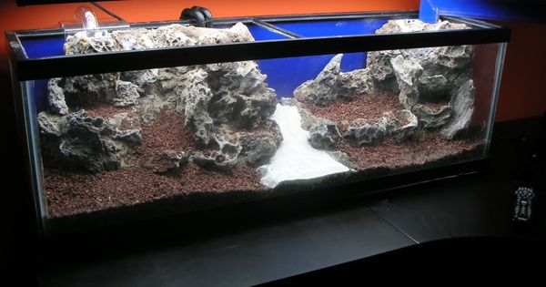 Diy Foam Rock Aquascape My Aquarium Pinterest Fish