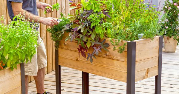 Elevated Garden Beds on Legs  Elevated Planter Box  Made in USA  Garden  Pinterest ...