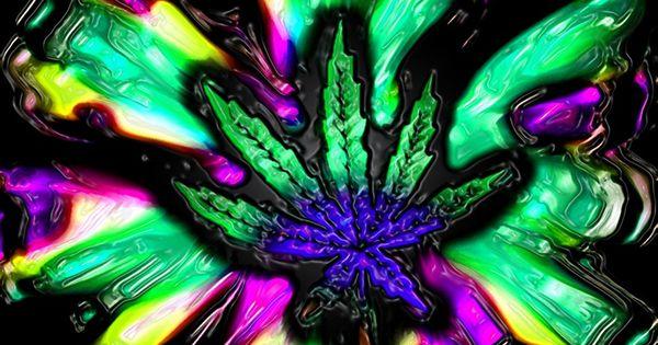 marijuana pictures   C...