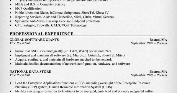 VP Of Information Technology Resume Example (http://resumecompanion.com)