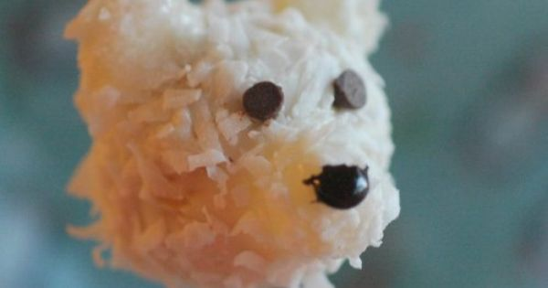 A Teddy Bear Cake Pop With Coconut For The Fur Polar Bear