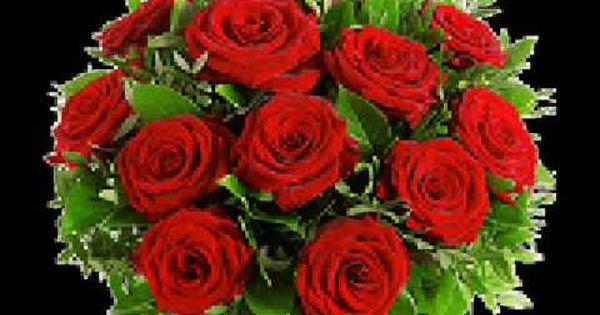 semino rossi rot sind die rosen snitlys music semino rossi pinterest youtube. Black Bedroom Furniture Sets. Home Design Ideas