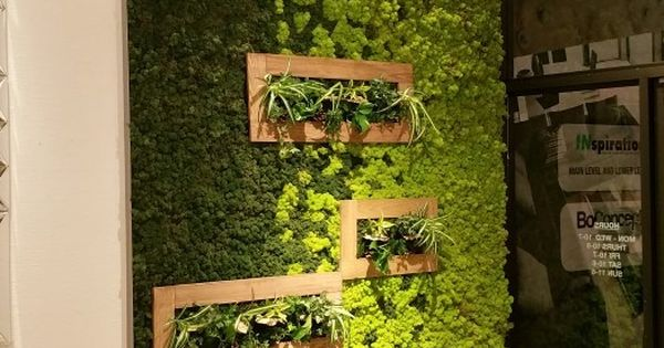 Moss is New Paint: How to Create Art with Moss  실내 정원, 디자인 홈 및 벽 ...