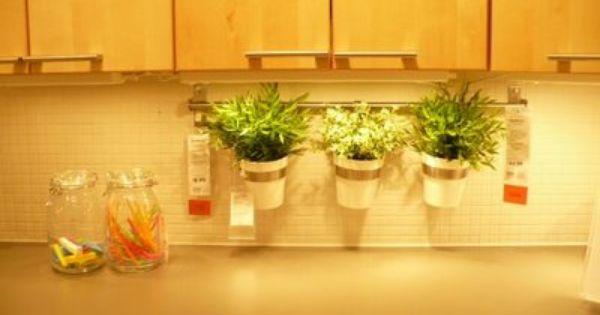My Ikea Trip Today Herb Garden In Kitchen Ikea Herb Garden Window Herb Garden