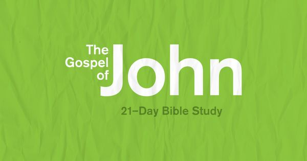 JOHN 1 - Chapter, Commentary, Bible Study - Understand ...