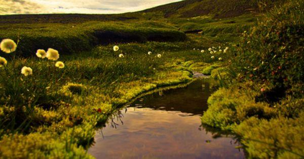 Iceland / Klara Harden Photography Beautiful Places