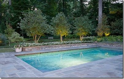 Things that inspire outdoor design elements bluestone for Pool design elements