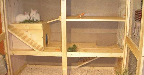dscn0354 jpg zuk nftige projekte pinterest kaninchen. Black Bedroom Furniture Sets. Home Design Ideas