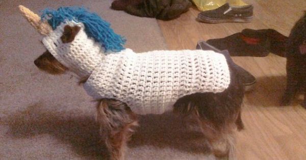 Crochet Unicorn Outfit : Unicorn outfit, Unicorns and For dogs on Pinterest