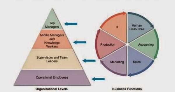 المدراء التنفيذين Top Managers مخطط المستويات التنظيمية صورة 2 6 وظائف الاعمال والمستويات التنظيمية هم الم Sales And Marketing Knowledge Worker Human Resources