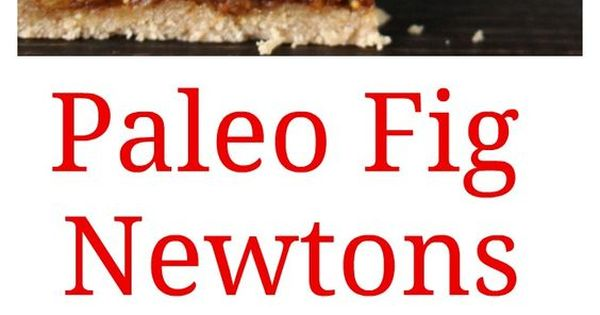 Gluten-Free Fig Cookies (a La Fig Newtons) Recipe — Dishmaps