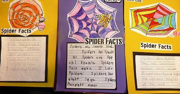 Spider - Story Starters for Kids (Summer)