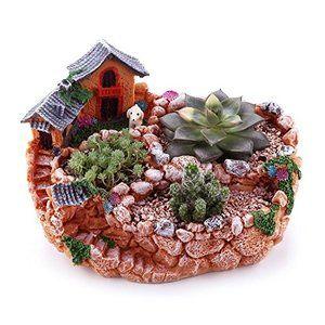 T4u 23cm 田園風景スタイル 家 Amp 農場 多肉植物 サボテン鉢