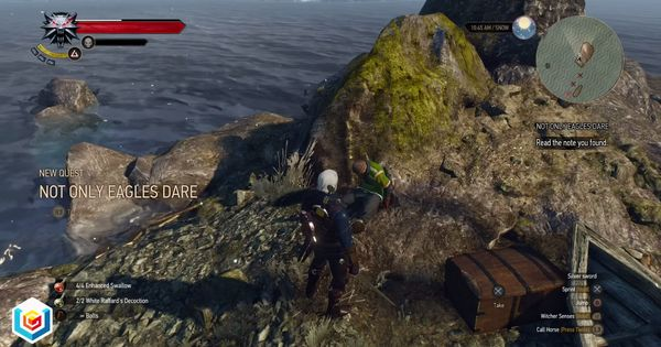 The Witcher 3 Wild Hunt Not Only Eagles Dare Treasure Hunt Quest