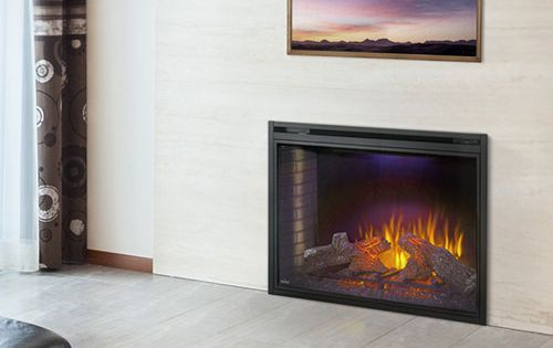 Napoleon Ascent 33 In Dual Voltage Built In Electric Fireplace