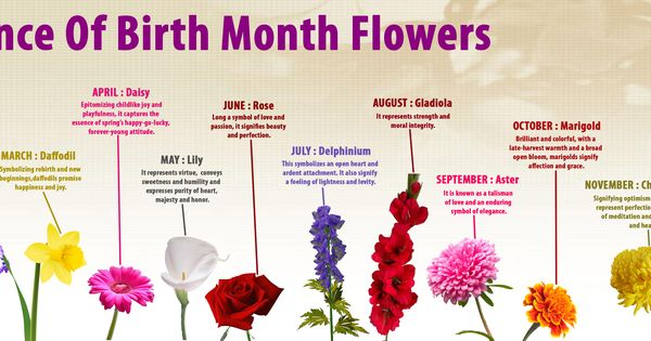 Birth Month Flowers Combined: Image From Http://thumbnails-visually.netdna-ssl.com/birth