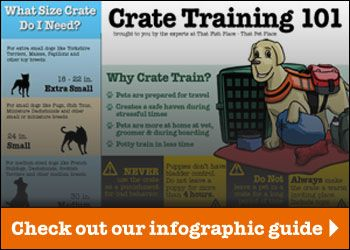 View Our Printable Infographic My Doberman Crate Training