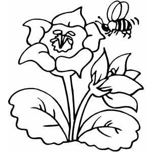 Coloring Book Bee Google Search Bee Coloring Pages Animal Coloring Pages Kids Printable Coloring Pages