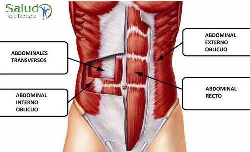 como eliminar la grasa del abdomen y cintura