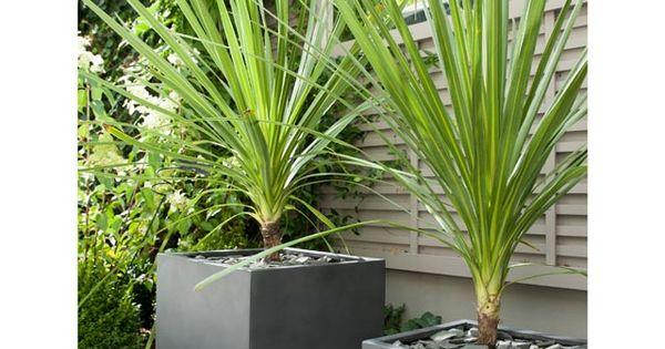 pot de fleurs carr en fibres d 39 argile gris castorama. Black Bedroom Furniture Sets. Home Design Ideas