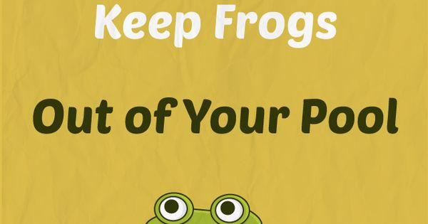 Got Frogs In Your Pool 5 Ways To Keep Frogs Out Of Your