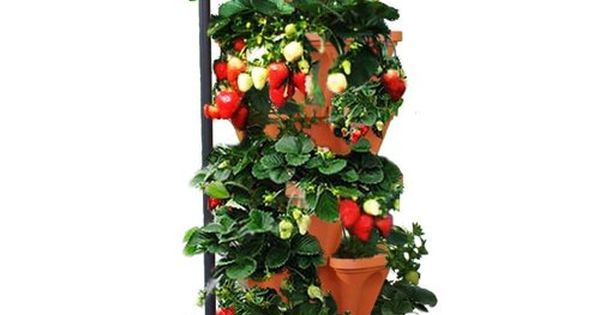 Mr Stacky Stacking Hydroponic Pots Tower The Vertical Container Hydroponics Growing System