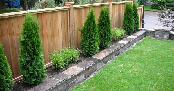 Backyard Plants Ideas small backyard design ideas small backyard design plans good garden ideas ideas with lawn back yard Backyard Fencing Privacy Fence Fence Sod Irrigation System Stone Work Plants Ideas For Outside Pinterest Raised Beds Examples And Backyards