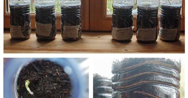 faire des semis dans des bouteilles plastique la bonne id e de mini serre qui profitera vos. Black Bedroom Furniture Sets. Home Design Ideas