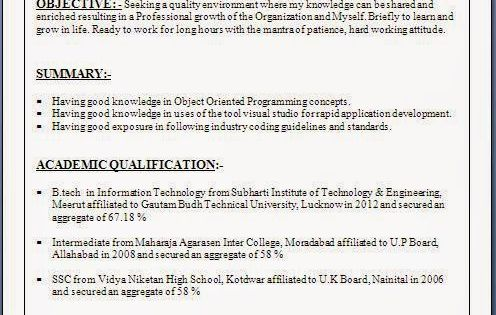 example of a job resume Sample Template Example ofExcellent