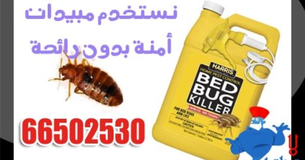 مواصفات المبيد المستخدم لرش الحشرات White Out White Out Tape