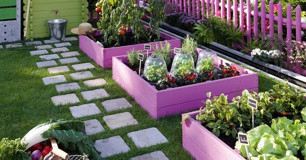 Purple garden boxes - plum purple for boxing in the rectangular vegetable