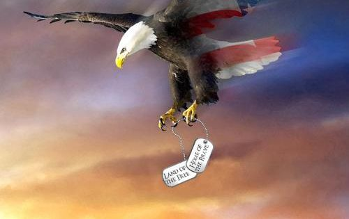 Bald Eagle Flag carrying dog tags with quotes   Patriotic ...