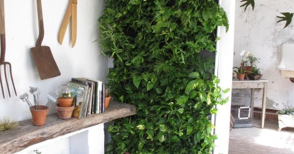 *vertical garden *indoor garden