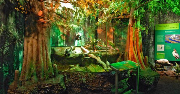 Zoo-Exhibits-Reptile-Exhibits-Public-Aquarium-Design.jpg 2,792?1,944 ...