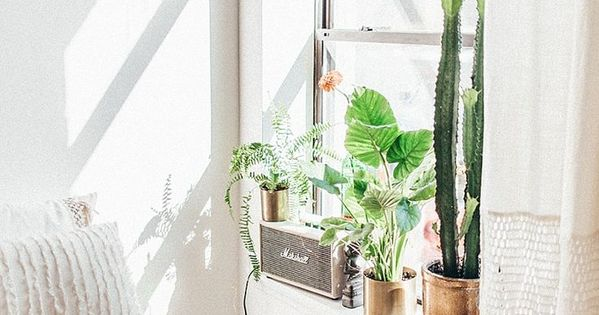 Tessa barton x urban outfitters home nyc apartment for Indoor gardening nyc