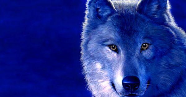 Blue Wolf Desktop Nexus Wallpapers Animals Wolf Background Wolf Wallpaper