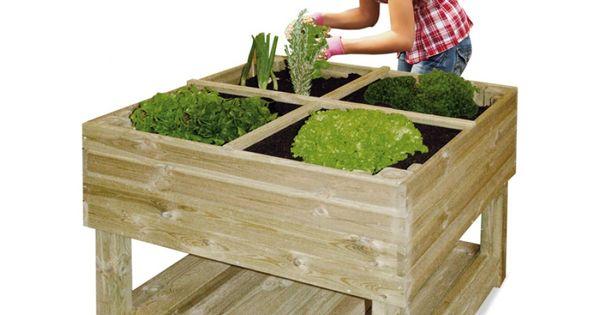 Pour terrarium jardin potager sur pieds 100 x 100 x 80 cm universo bois tortue pinterest - Jardin potager sur pied ...